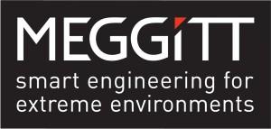 MeggittSEFEEboxedlogo(black)RGB